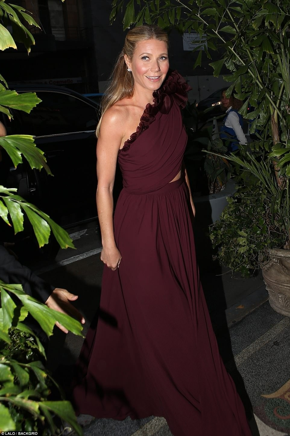 Actress Gwyneth Paltrow and Brad Falchuk hold \'secret wedding\' in LA (Photos)