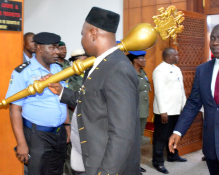 National Assembly tightens security following Mace theft
