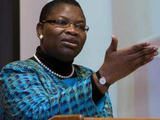 Oby Ezekwesili reacts to Femi Adesina's statement that President Buhari never said all Nigerian youths are lazy