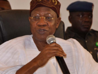 ''Critics inciting youths against Buhari'' Lai Mohammed