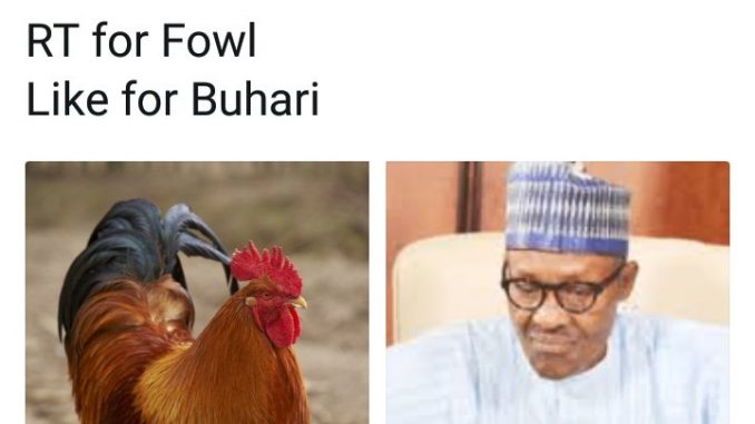 WTF? Nigerians on twitter were asked to choose between a chicken and President Buhari. See the result