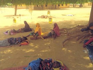 Shocking photo of ailing Sokoto state residents receiving drip under a tree at a public health center