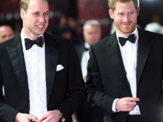 Prince William will be Prince Harry's best man at his wedding to Meghan Markle next month