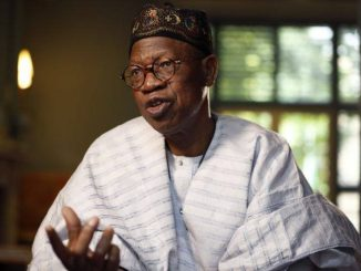 Lai Mohammed says under Jonathan's government, Boko Haram used to stroll into Abuja at will