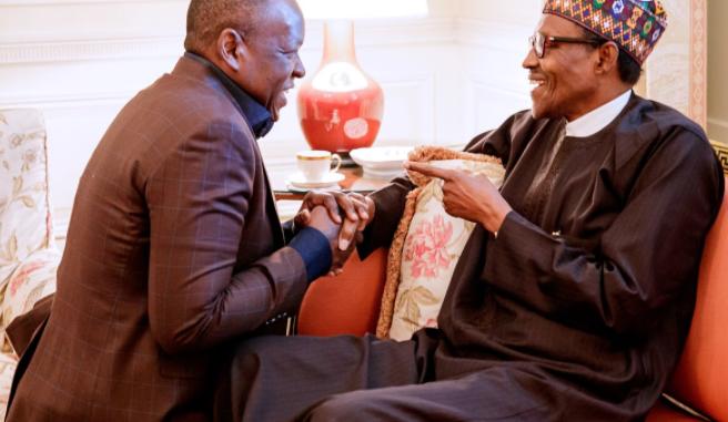 Nigeria's politics for the learners: Lekan Fatodu writes on Tope Shonubi kneeling before President Buhari in Washington