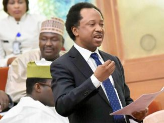 Shehu Sani Blasts Buhari For Calling Nigerian Youths Lazy