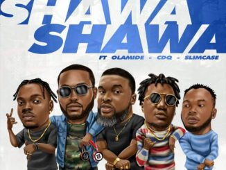 #Nigeria: Music: DJ Neptune x Larry Gaaga Ft. Olamide, CDQ & Slimcase – Shawa Shawa