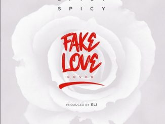 spiccy fake love