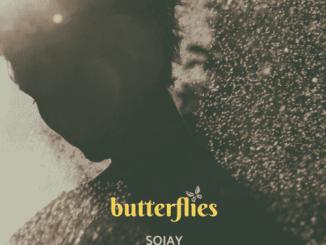 SOJAY-Butterflies