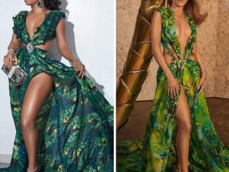 Toke Makinwa recreates Jennifer Lopez's iconic Versace outfit......did she nail it? (photos)