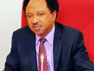 '' President Buhari must apologize to Nigerian Youths for saying they are all lazy'' Shehu Sani