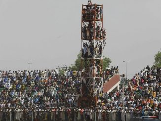 """Crazy Buharists are everywhere'' Lauretta Onochie says as she shares photos of Bauchi residents that climbed poles to catch a glimpse of President Buhari"