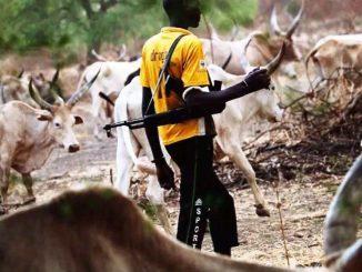 NEC bans movement of herdsmen in Benue, Taraba, others