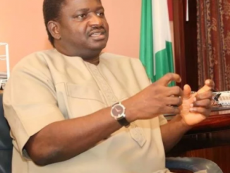 No single town in Nigeria is under the control of Boko Haram - Femi Adesina