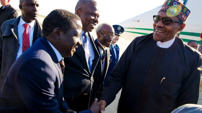 Garba Shehu insists President Buhari is the first African head of government to visit President Donald Trump in the White House