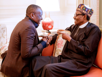 Nigeria's politics for the learners: Lekan Fatodu writes on Tope Shonubi kneeling before President Buhari in Washington